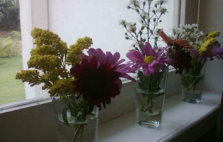 Copos podem ser utilizados como vasos de flores na decoração da cozinha - Ana Luiza/Arquivo Pessoal